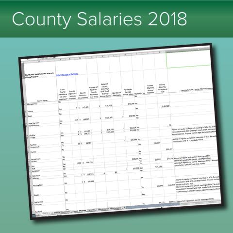 County salaries report, 2018